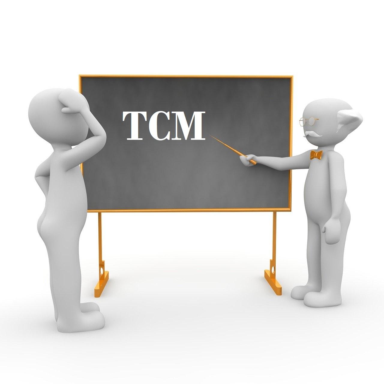 Soustředění TCM